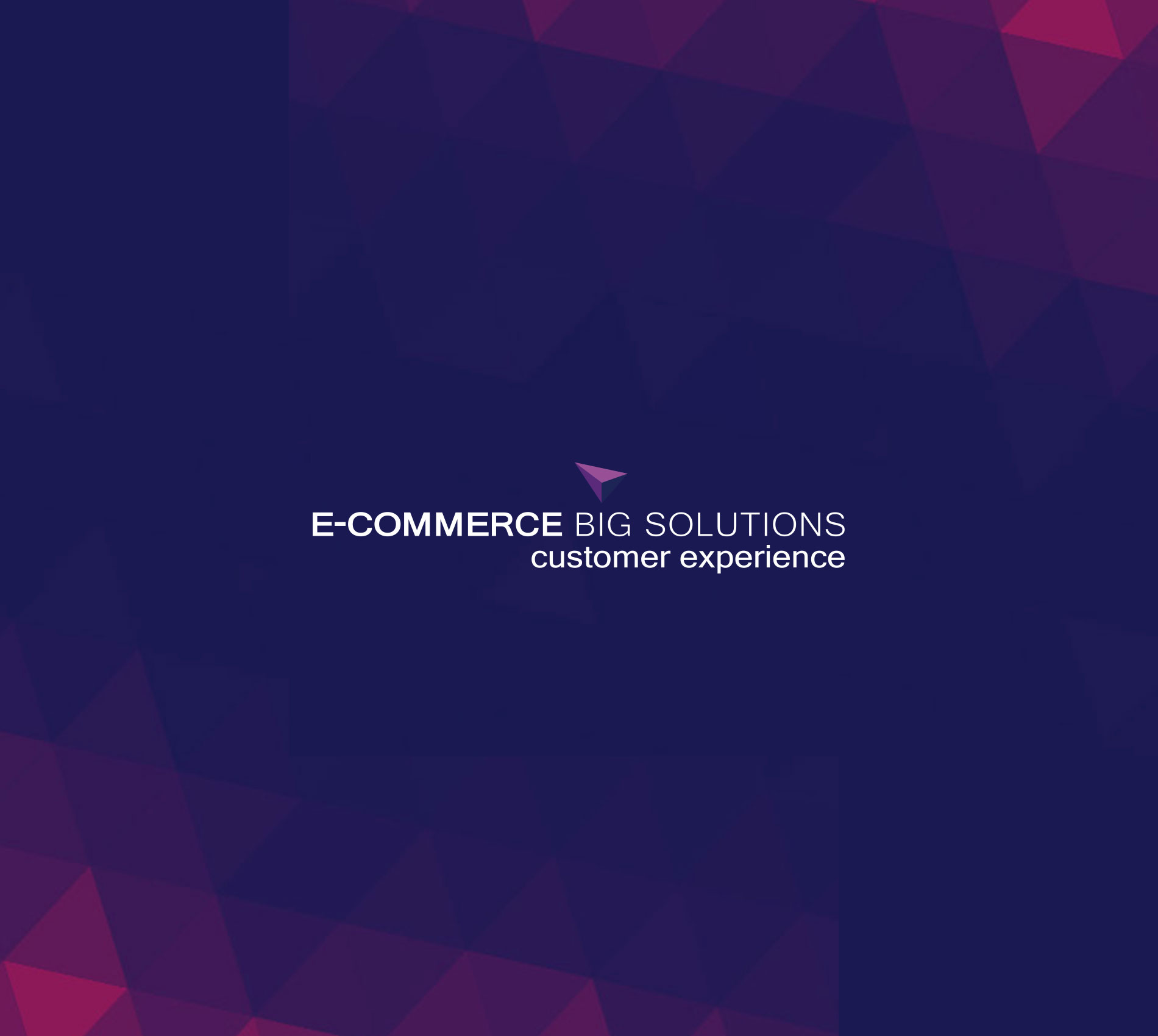 E-commerce Big Solutions | Customer Experience 2021